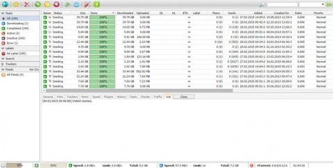 واجهة ruTorrent